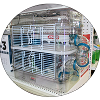Rody Hamster Habitat